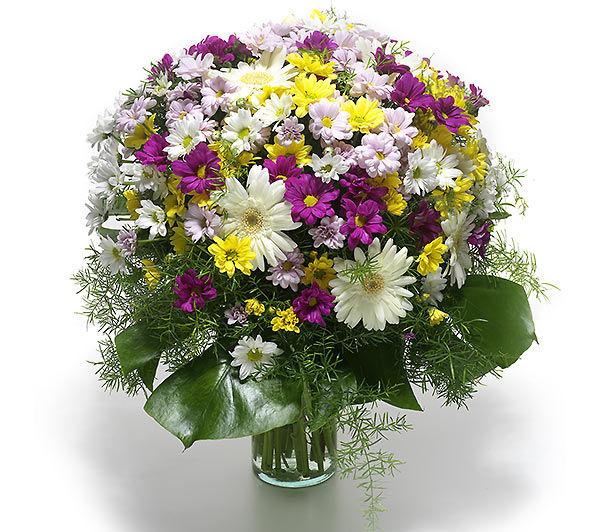 Cam Vazoda Kýr Çiçekleri