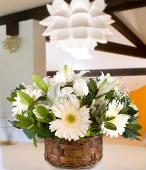 Sepette Beyaz Çiçekler