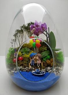 Teraryum mini orkide